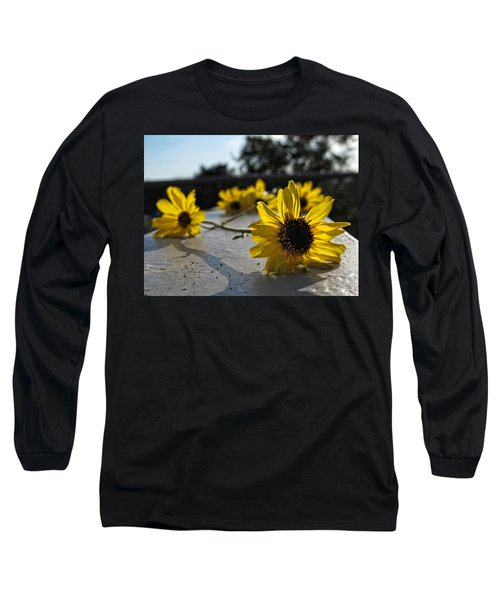 Daisy Daisy Give Me Your Answer Long Sleeve T-Shirt