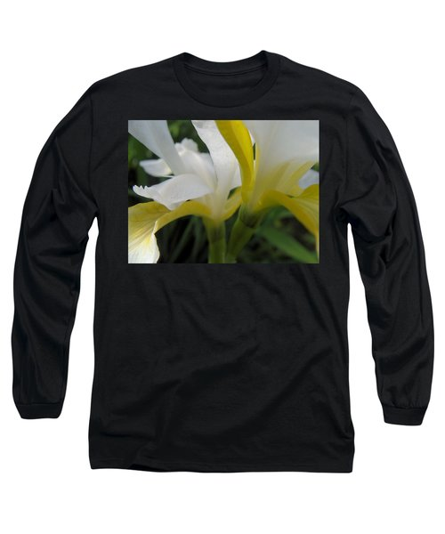 Delicate Iris Long Sleeve T-Shirt by Cheryl Hoyle