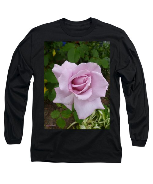 Long Sleeve T-Shirt featuring the photograph Delicate Purple Rose by Lingfai Leung