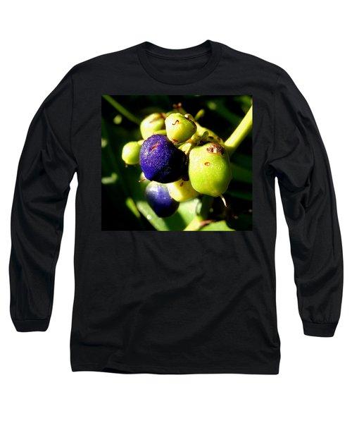 Dew Kissed Long Sleeve T-Shirt by Pamela Walton