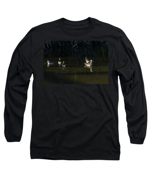 Digital Oil Of Sandpipers Long Sleeve T-Shirt