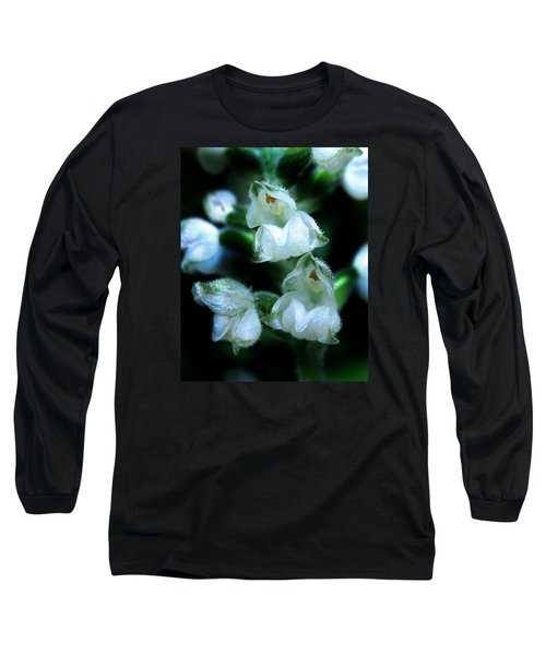 Downy Rattlesnake Plantain Orchid Long Sleeve T-Shirt by William Tanneberger