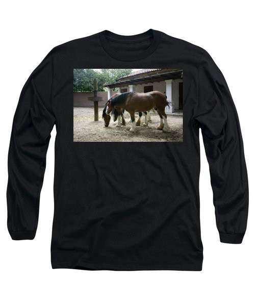 Draft Horses Long Sleeve T-Shirt by Lynn Palmer
