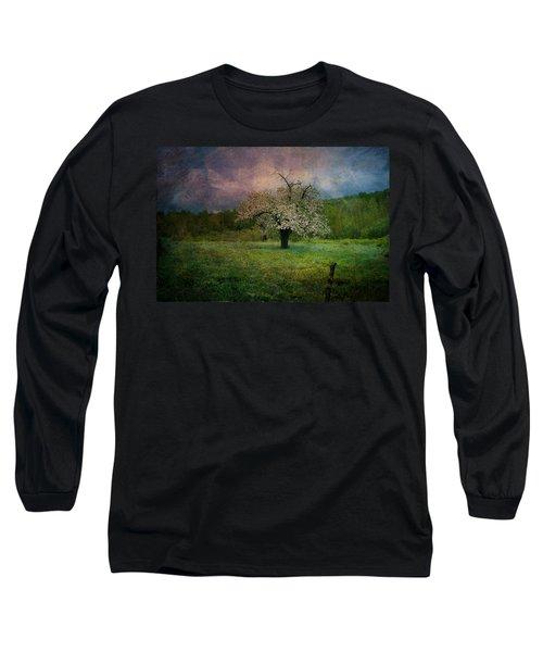 Dream Of Spring Long Sleeve T-Shirt