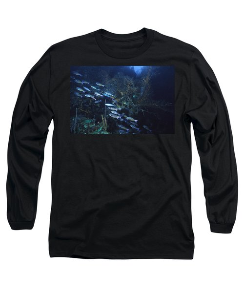 Dusk Over The Ledge Long Sleeve T-Shirt