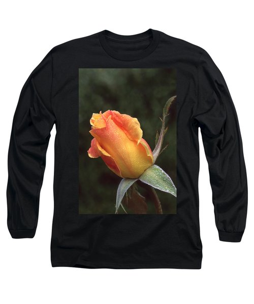 Early Morning Rosebud Long Sleeve T-Shirt