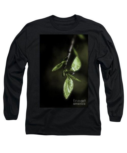 Early Spring Leaves Long Sleeve T-Shirt