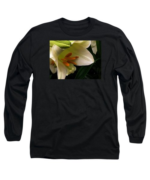 Easter 2014-4 Long Sleeve T-Shirt by Jeff Iverson