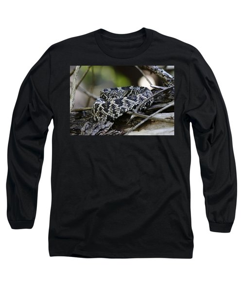 Eastern Diamondback-1 Long Sleeve T-Shirt by Rudy Umans