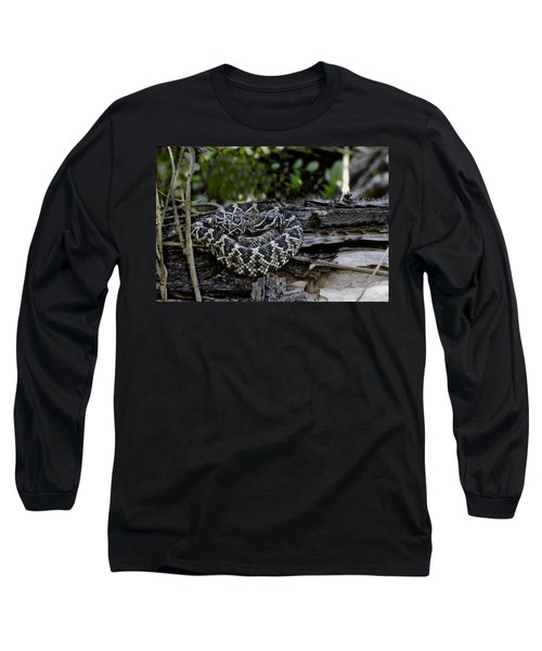 Eastern Diamondback-2 Long Sleeve T-Shirt by Rudy Umans