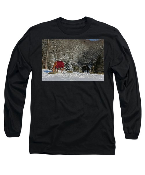 Long Sleeve T-Shirt featuring the photograph Eating Hay In The Snow by Denise Romano