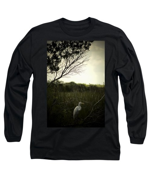 Egret At Sunset Long Sleeve T-Shirt by Bradley R Youngberg