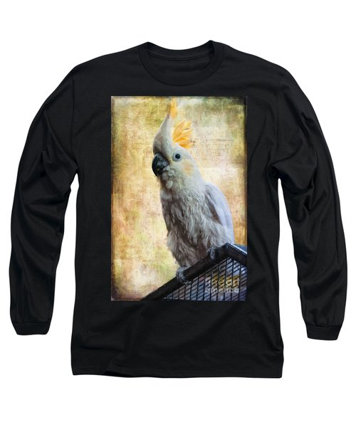Elegant Lady Long Sleeve T-Shirt