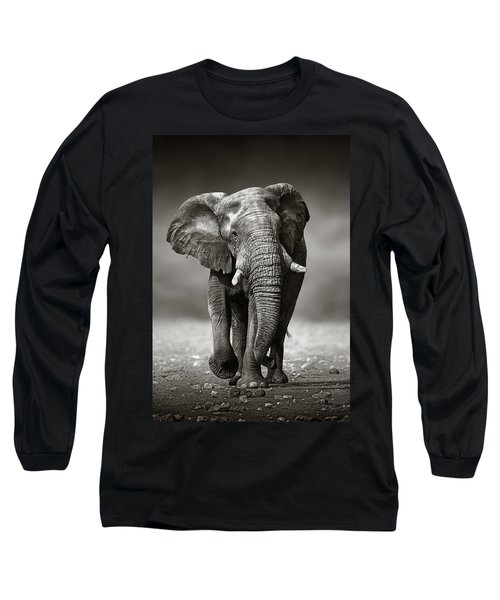 Elephant Approach From The Front Long Sleeve T-Shirt by Johan Swanepoel