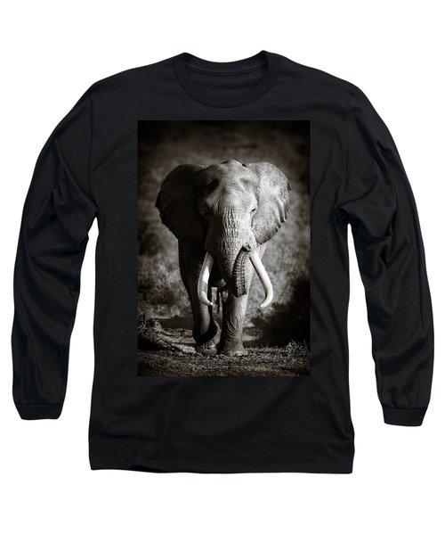 Elephant Bull Long Sleeve T-Shirt