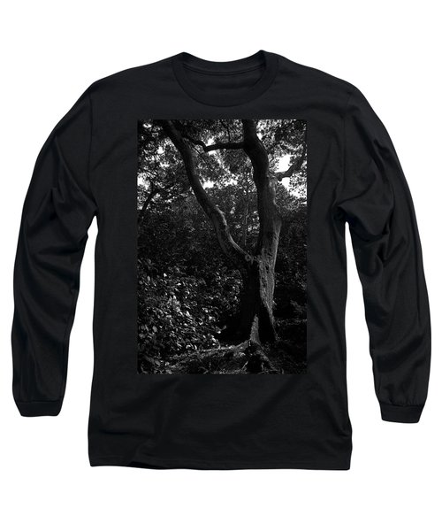 Long Sleeve T-Shirt featuring the photograph Elizabethan Gardens Tree In B And W by Greg Reed