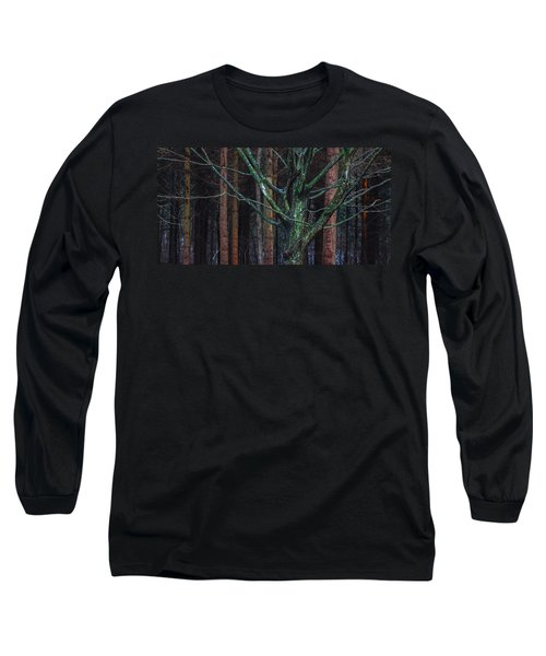 Long Sleeve T-Shirt featuring the photograph Enchanted Forest by Davorin Mance