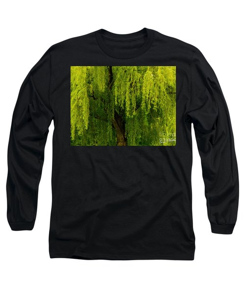 Enchanting Weeping Willow Tree  Long Sleeve T-Shirt by Carol F Austin