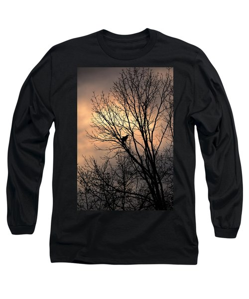 End Of The Day  Red Tailed Hawk Long Sleeve T-Shirt