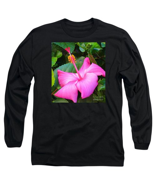 Exotic And Beautiful Flower In My Back Yard. Long Sleeve T-Shirt