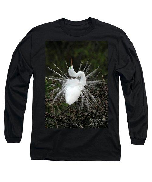 Fabulous Feathers Long Sleeve T-Shirt