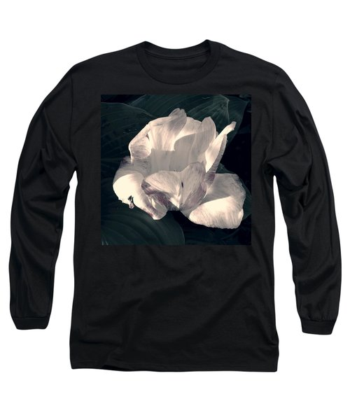 Faded Beauty Long Sleeve T-Shirt by Photographic Arts And Design Studio