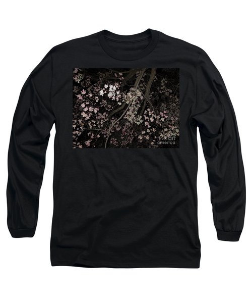 Fading Fall Long Sleeve T-Shirt by Ann Horn
