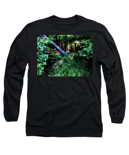 Long Sleeve T-Shirt featuring the photograph Fairy Forest by Jamie Lynn