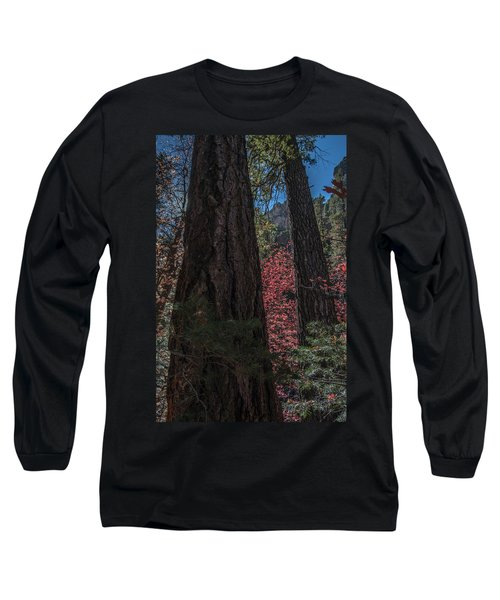 West Fork Perspective Long Sleeve T-Shirt