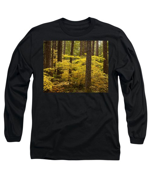 Long Sleeve T-Shirt featuring the photograph Fall Foliage by Belinda Greb