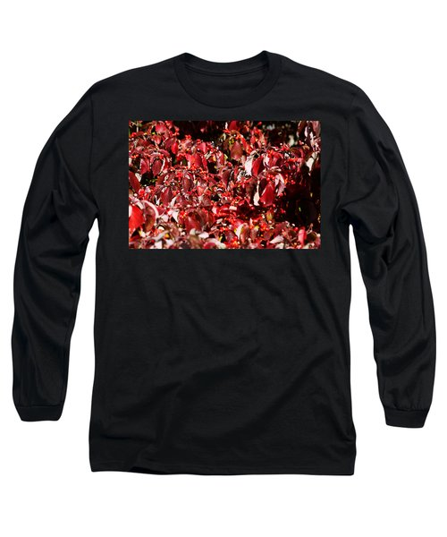Fall Foliage Colors 08 Long Sleeve T-Shirt