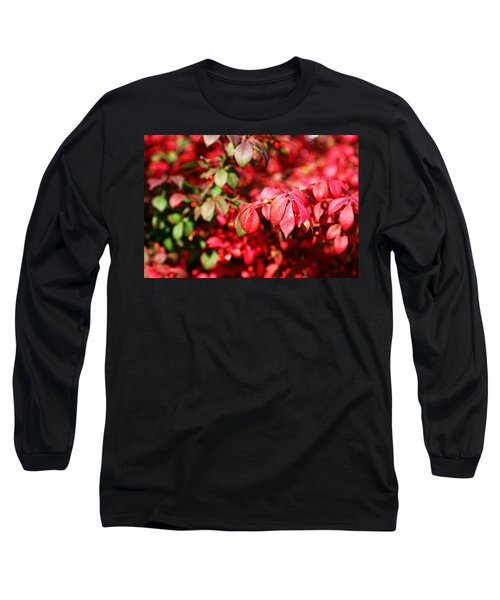 Fall Foliage Colors 10 Long Sleeve T-Shirt