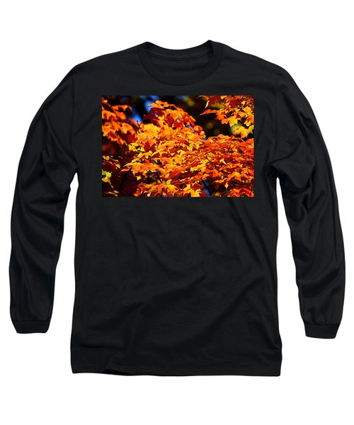 Fall Foliage Colors 16 Long Sleeve T-Shirt