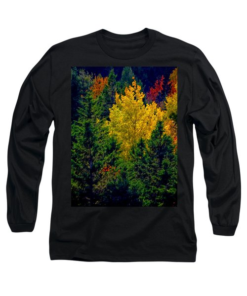 Fall Leaves Long Sleeve T-Shirt by Bill Howard