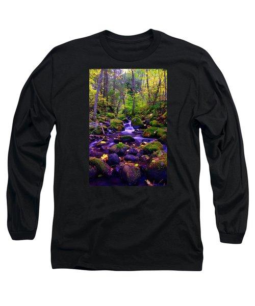 Fallen Leaves On The Rocks Long Sleeve T-Shirt
