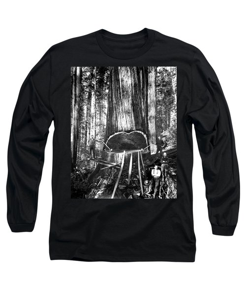 Falling A Giant Sequoia C. 1890 Long Sleeve T-Shirt by Daniel Hagerman