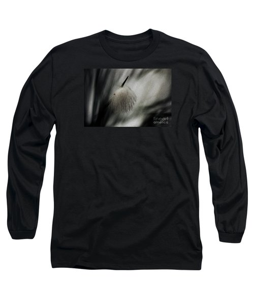 Long Sleeve T-Shirt featuring the photograph Feather by Cassandra Buckley