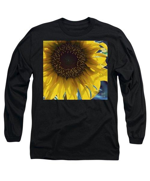 Fermats Spiral Long Sleeve T-Shirt