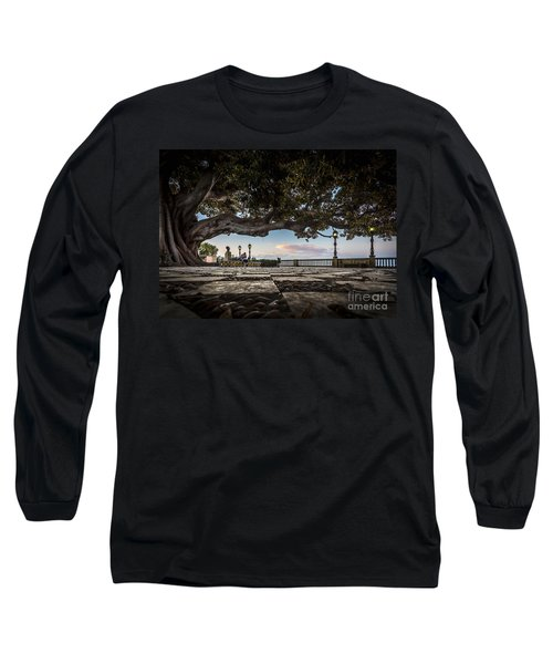 Ficus Magnonioide In The Alameda De Apodaca Cadiz Spain Long Sleeve T-Shirt by Pablo Avanzini