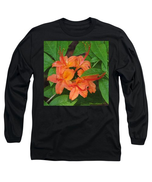 Flame Azalea Long Sleeve T-Shirt