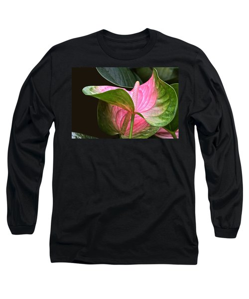 Flamingo Flower Long Sleeve T-Shirt