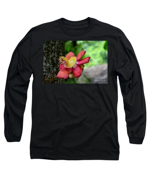 Flower Of Cannonball Tree Singapore Long Sleeve T-Shirt