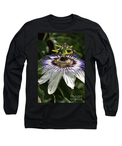 flower-Passionfruit Long Sleeve T-Shirt