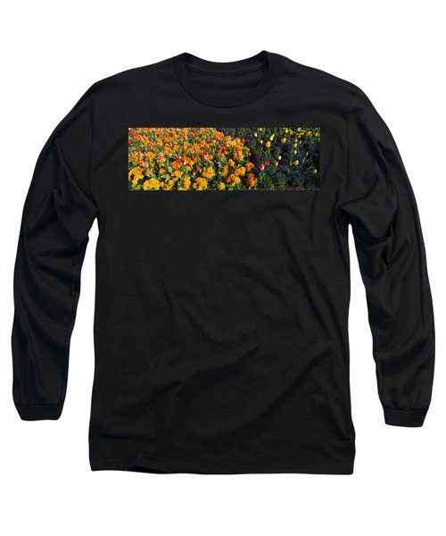 Flowers In Hyde Park, City Long Sleeve T-Shirt by Panoramic Images