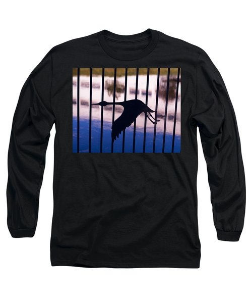 Flying Fence Long Sleeve T-Shirt by Tara Lynn