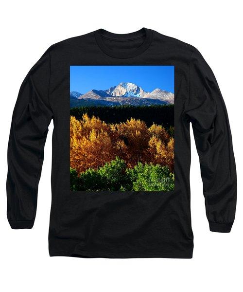 Four Seasons Long Sleeve T-Shirt by Steven Reed