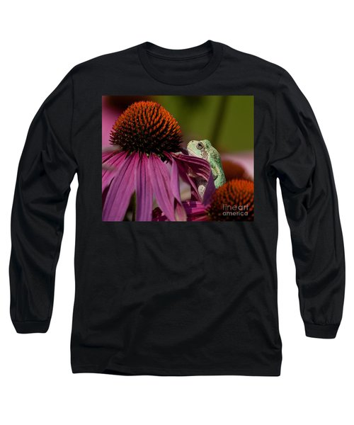 Frog And His Cone Long Sleeve T-Shirt