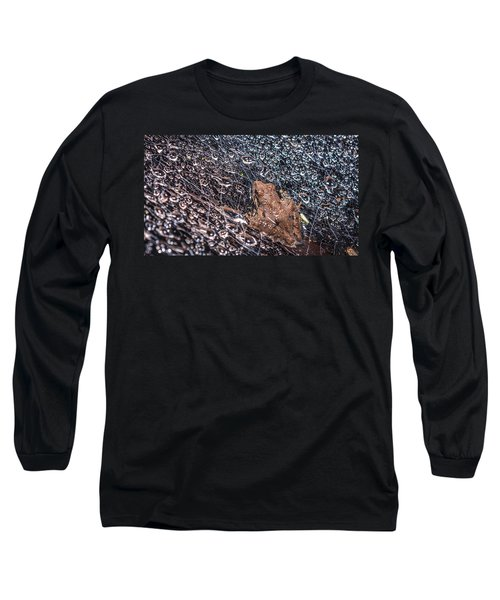 Frog On A Web Long Sleeve T-Shirt