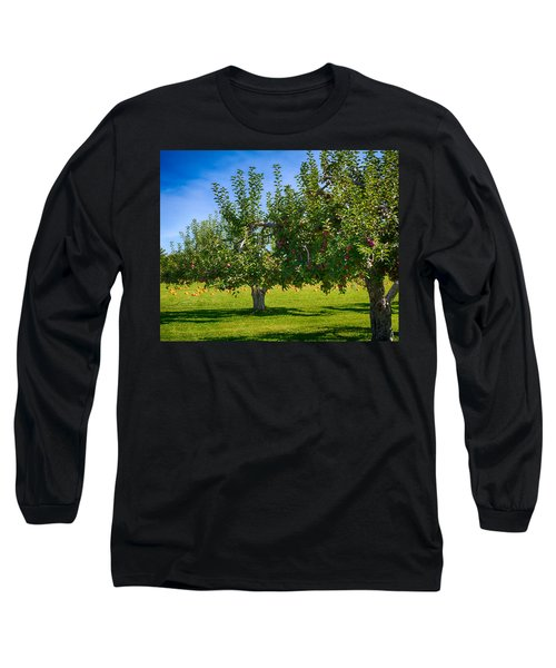Fruits And Vegetables Long Sleeve T-Shirt