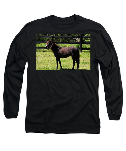 Furry Pony Long Sleeve T-Shirt